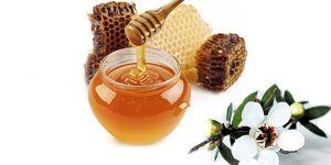 Differentiating-Manuka-Oil,-Manuka-Honey-and-Manuka-Hydrosol