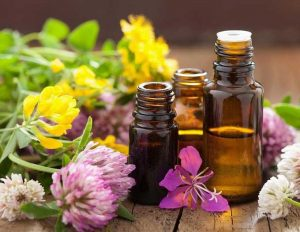 Dùng các loại tinh dầu có nguồn gốc từ các thực vật tự nhiên để se khít lỗ chân lông