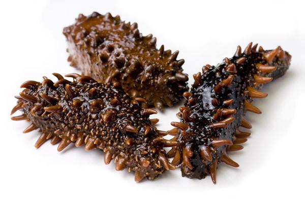 Sea cucumber hải sâm